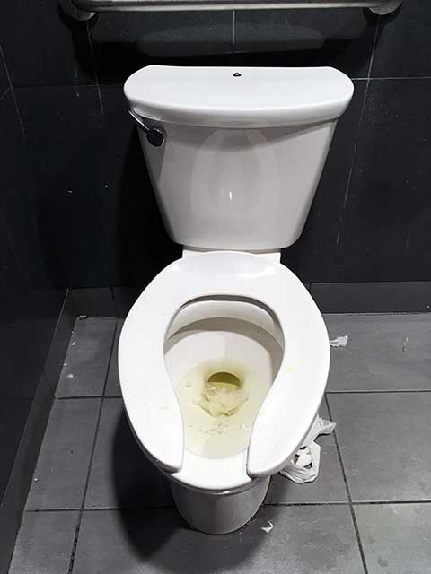 日本の良いところ:海外の汚いトイレ事情
