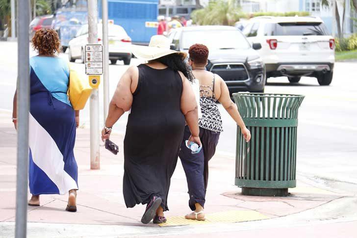 太ってる人たち