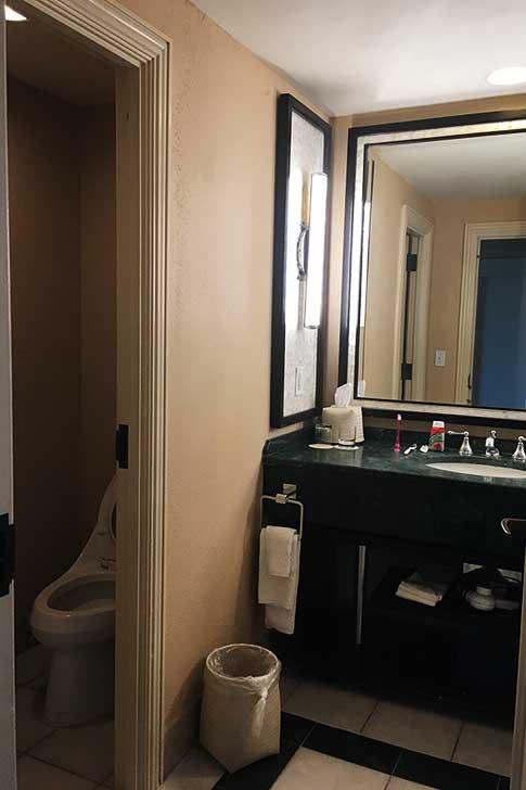 [バハマ]アトランティスのトイレ